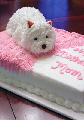 Торт из мастики заказать на день рождения
